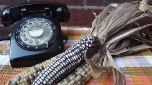 A phone (r) and some corn (l - see item 18 below)