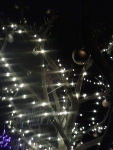 Brightness on a winter's night