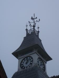 Cupola starlings 23 10 12