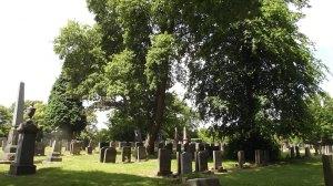 Merridale Cemetery: Wolves