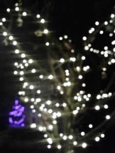 Faery lights: Yule, 2014