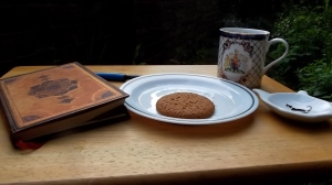 A nice cup of tea, and a ginger biscuit. Day made!
