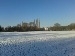 A field in winter: December 2014